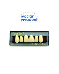 Ivoclar Ivostar Resin Teeth